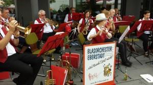 Weinfest Rechtenbach 2016 (6)